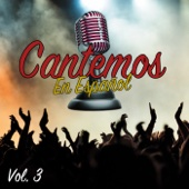 Ni Tú Ni Nadie (Karaoke Version)