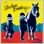 True Sadness - The Avett Brothers Cover Art