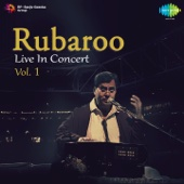 Rubaroo - Live in Concert, Vol. 1