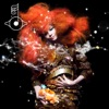 Biophilia, Björk