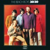 20/20, The Beach Boys