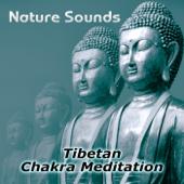 Nature Sounds – Relaxation & Tibetan Chakra Meditation, Healing Massage and Spa, Yoga Music Sound Therapy for Chakra Balancing, Baby Deep Sleep, Studying Music