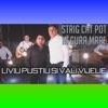Strig Cat Pot In Gura Mare (feat. Vali Vijelie) - Single, Liviu Pustiu