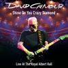 David Gilmour - Shine On You Crazy Diamond, Pts. 1-9 (feat. Crosby & Nash) [Live At the Royal Albert Hall] ilustración
