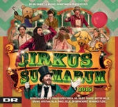 Cirkus Summarum 2015