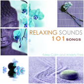 [Download] Relaxing Sounds 101 MP3