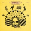 Shawn Lee\'s Ping Pong Orchestra