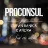 Aici cu mine (feat. Stefan Banica & Andra) - Single, Proconsul