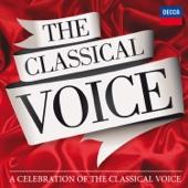 Vesperae Solennes, K. 344: Laudate Dominum [Free mp3 Download songs and listen music]
