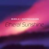 Etheral Sunshine (Remixes)
