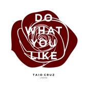 Do What You Like - Single