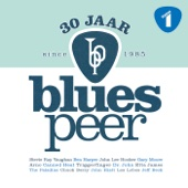 30 Jaar Blues Peer