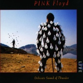 Pink Floyd - Delicate Sound of Thunder (Live) artwork
