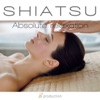 Shiatsu (Absolute Relaxation), Fly Project