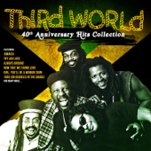 40th Anniversary Hits Collection - Third World