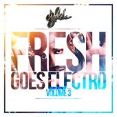 Fresh Goes Electro, Vol. 3