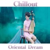 Chillout, Fly Project