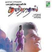 Taj Mahal (Original Motion Picture Soundtrack)