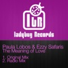The Meaning of Love - Single