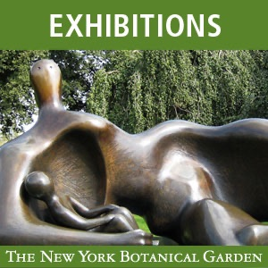 Moore in America: Monumental Sculpture at the New York Botanical Garden (2008)