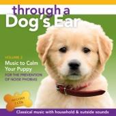 [Descargar Mp3] Through a Dog's Ear, Pt. 1 MP3