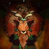 Newen Afrobeat - Caminante artwork