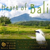 Mount Batukaru Morning, Pt. 2 - Wild Eden Nature Sounds & Dr Eric Fassbender