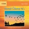 Sacred Chants, Vol. 2