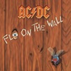 Fly On the Wall, AC/DC