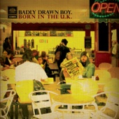 Badly Drawn Boy - The Time of Times artwork