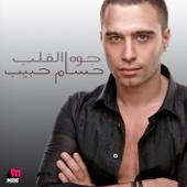 Hosam Habib - Shoft Be E'naya artwork