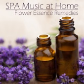 SPA Music at Home: The Music of Flower Essence Remedies