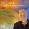 The davidji Meditation Experience, Vol. 1