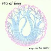 Sea of Bees - Wizbot обложка