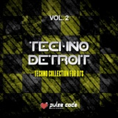 Techno Detroit, Vol. 2 (Techno Collection for DJ's)