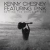 Setting the World on Fire (with P!nk) - Single - Kenny Chesney, Kenny Chesney