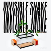 Invisible Snake - EP