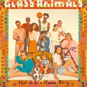 Glass Animals - How to Be a Human Being  artwork