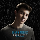 Shawn Mendes - Never Be Alone  arte