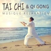 Tai chi & Qi gong: Musique relaxation - Gymnastique traditionnelle, Pensée positive, Confiance en soi, Zen antistress musique, Yoga 101, La sophrologie, Harmoniser le corps et l'esprit