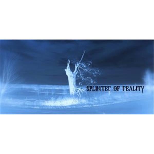 Splinter of Reality