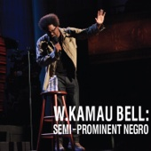 Cover to W. Kamau Bell's Semi-Prominent Negro