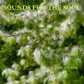Sounds for the Soul 46: Erhu and Rain