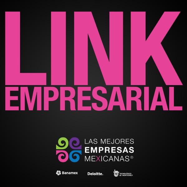 Link Empresarial, Las Mejores Empresas Mexicanas