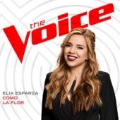 [Download] Como la Flor (The Voice Performance) MP3