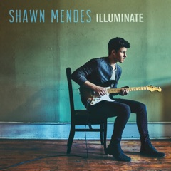 Shawn Mendes Like This cover
