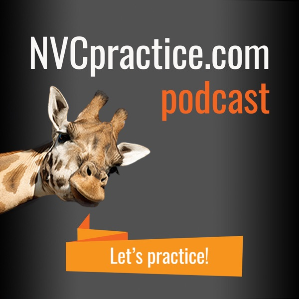 The NVCpractice.com Podcast