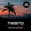 Summer Nights (feat. John Legend) [Tiësto's Deep House Remix] - Single