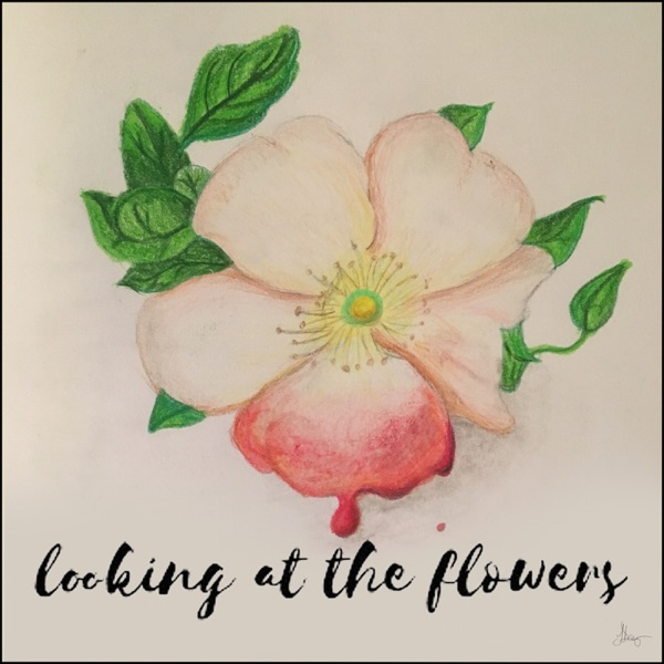 Looking at the Flowers Podcast