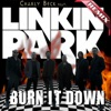 Burn It Down (feat. LINKIN PARK) - Single, Charly Beck
